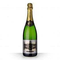 Champagne Trouillard Extra Sélection Brut 75cl www.odyssee-vins.com
