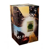 Bag-in-Box 10L Vignobles Blancheton Côtes de Duras Blanc www.odyssee-vins.com
